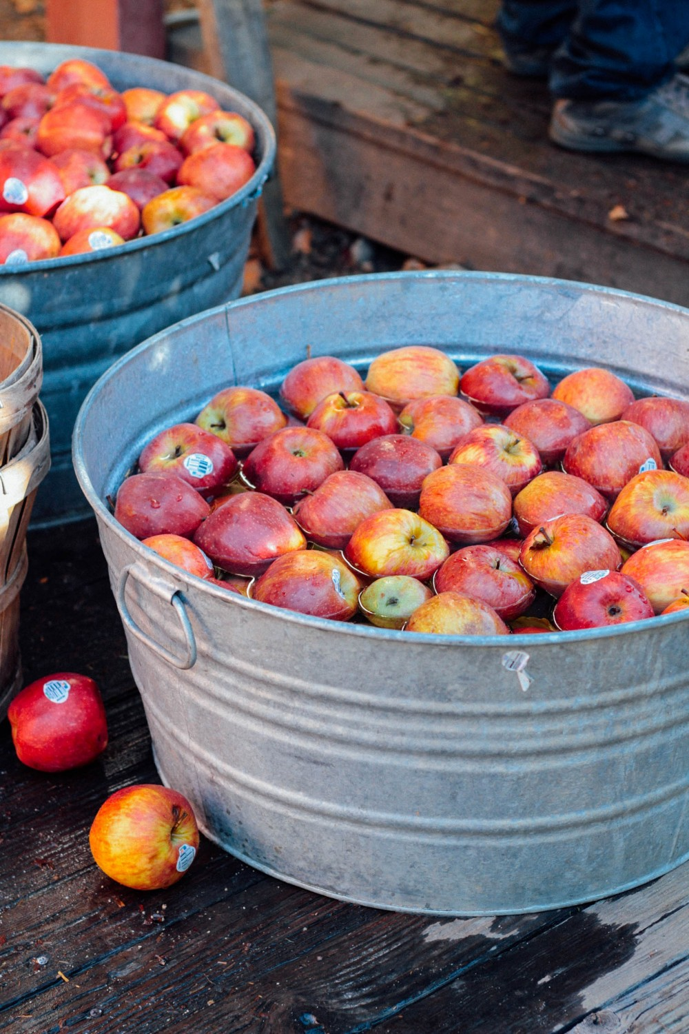 Apple picking at Willowbrook Farm | Adorned With Love